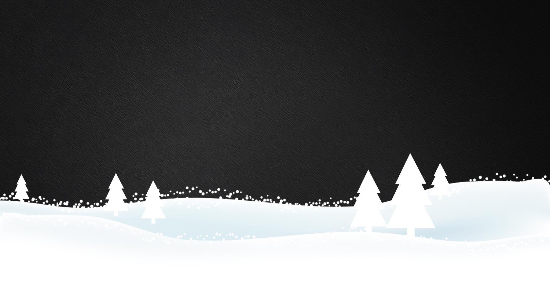 Mizrentals SnowFall Background Image